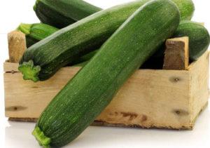 Venta de calabacin ecologico en internet