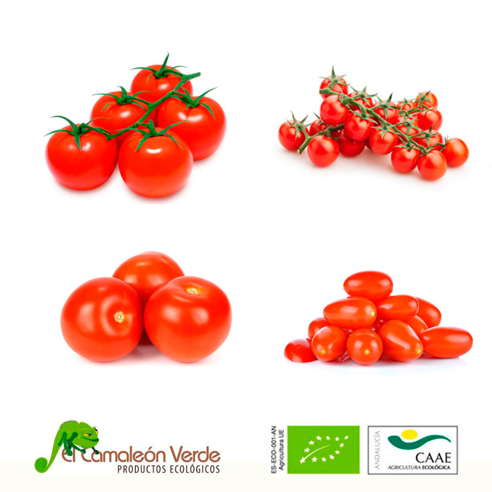 Compra tomate ecologico online